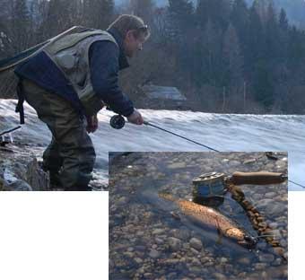 hucho fishing